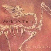 Wisdom's Tooth