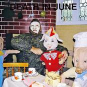 album All Pigs Must Die by Death in June