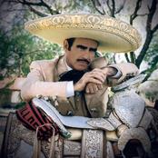 Vicente Fernandez - La Vida Es Una Copa De Licor
