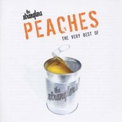 Peaches: The Very Best of the Stranglers