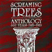 Anthology: SST Years 1985-1989