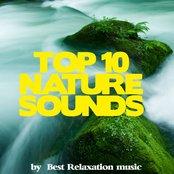 Nature Sounds Top 10
