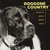 Doggone Country Favorite Songs About Dogs