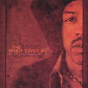 The Spirit Lives On - The Music of Jimi Hendrix Revisited vol I