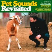 Pet Sounds Revisited