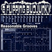 Smokey Reasonable Grooves