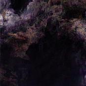 Cover artwork for P