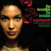 The Incredible / The Invisible
