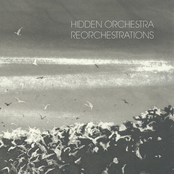 album Reorchestrations by Floex