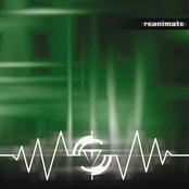 Reanimate (2003)
