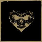 Brown Heartskull