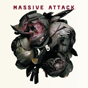 album Collected by Massive Attack