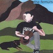 the femurs