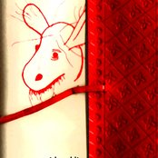 The Rabbit's Logbook