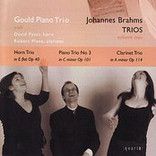 Brahms Trios - Volume Two