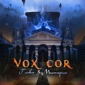 VoxCor