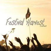 Festival Harvest
