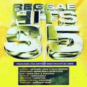 Reggae Hits Vol. 35