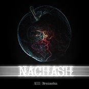NACHASH