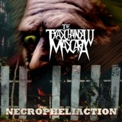Necrophiliaction