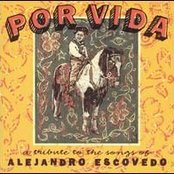 Por Vida: A Tribute to the Songs of Alejandro Escovedo (disc 1)