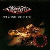 No Waste Of Flesh
