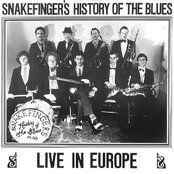 Snakefinger's History Of The Blues- Live In Europe