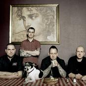 Volbeat setlists