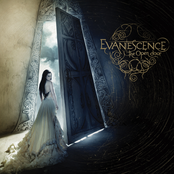 album The Open Door by Evanescence