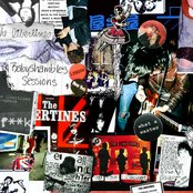 The Babyshambles Sessions