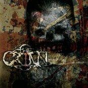 The Crinn