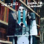 Ignore the Ignorant