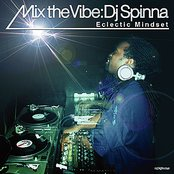 Mix The Vibe Series: DJ Spinna Selections