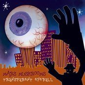 Transparent Eyeball
