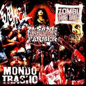 Mondo Trasho Split cd FeroxFecal/Insane Consanguineous Farmer/Zombi Gang Bang