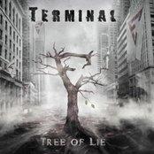 Tree of lie