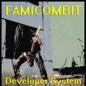 Developer System