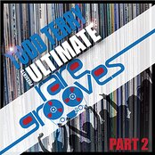 Todd Terry's Ultimate Rare Grooves (Part 2)