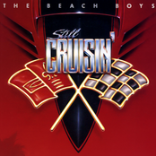 album Still Cruisin' by The Beach Boys