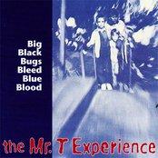 Big Black Bugs Bleed Blue Blood