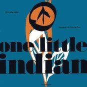 One Little Indian - Greatest Hits Vol. 2