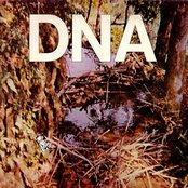 A Taste of DNA