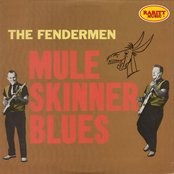 Mule Skinner Blues: Rarity Music Pop, Vol. 183
