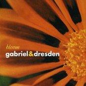 Bloom (disc 2)