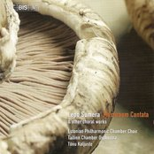 Sumera: Mushroom Cantata / Concerto Per Voci E Strumenti / Island Maiden's Song From the Sea