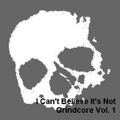 I Can't Believe It's Not Grindcore, Volume 1