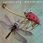 Intricate Maximals