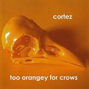 Too Orangey For Crows