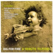 Dig for Fire: a Tribute to Pixies