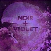 NOIR + Violet